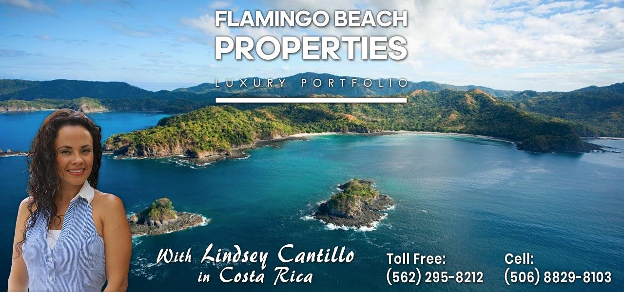 Flamingo Beach Properties with Lindsey Cantillo