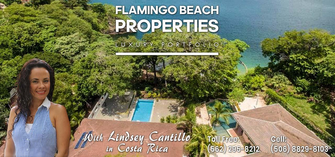 Flamingo Beach Realty - expert advice, many listings