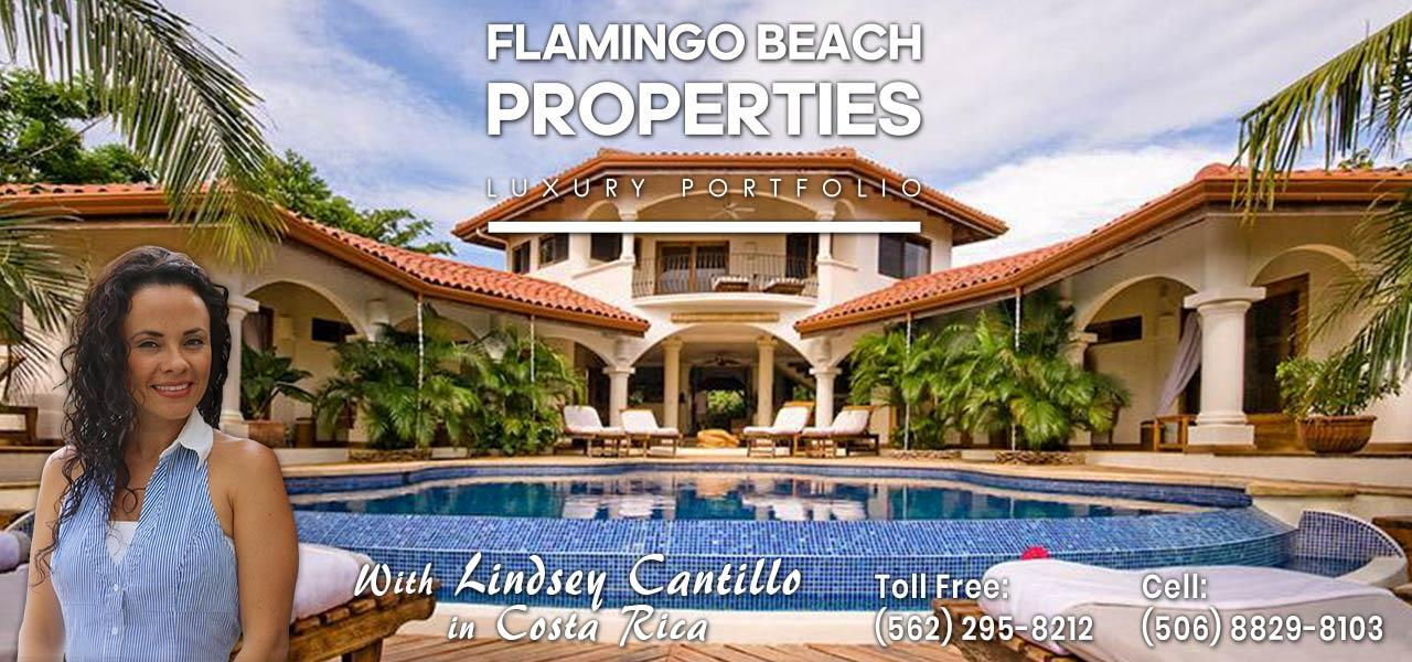 luxury homes in guanacaste